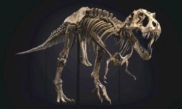 В США на аукционе продали скелет тираннозавра за $31,8 млн