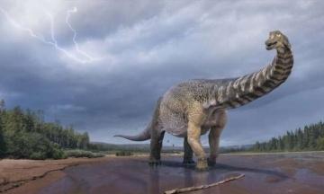 В Австралии открыли новый вид динозавров, который был крупнейшим на континенте