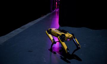 Корейська Hyundai купила виробників роботів Boston Dynamics. Це допоможе компанії відійти від традиційних авто