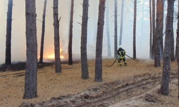 Пожежі в Луганській області: ДБР повідомило про підозру трьом посадовцям ДСНС