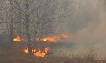 У Житомирській області троє людей отримали опіки через спалювання трави. В одного з постраждалих уражено приблизно 90% тіла