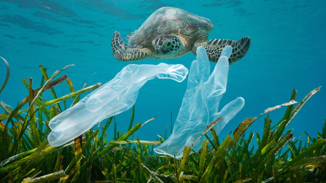Медичні маски та флакони від дезінфекторів засмітили всю планету. Їх знаходять навіть на коралових рифах. Пандемія ковіду засипає нас пластиковим сміттям — схоже, далі буде гірше