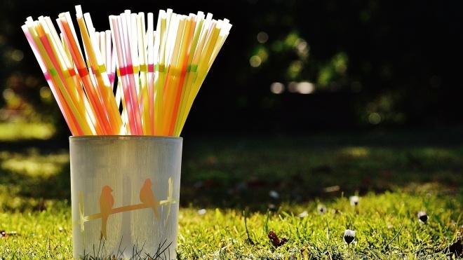 В Евросоюзе вступил в силу запрет на продажу одноразовых товаров из пластика