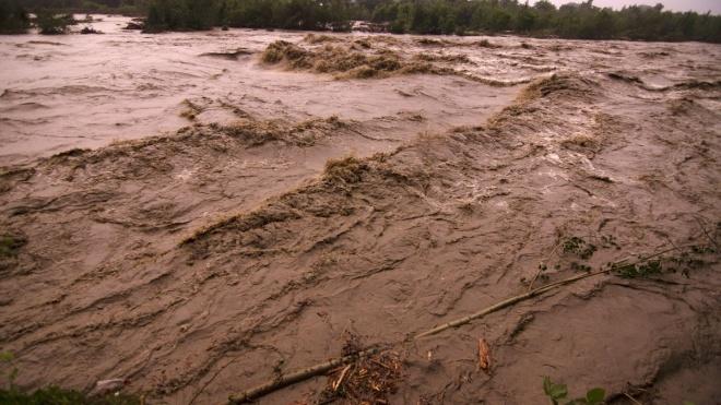 У ДСНС попередили про можливий вихід річок із берегів на заході України. Там прогнозують грози