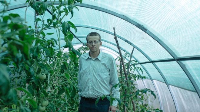 Переселенця Віктора Ручка судять за вирощування 27 кущів конопель. Він курив канабіс 20 років, щоб полегшити біль через ниркову недостатність