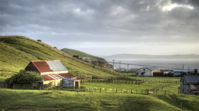 Попри пандемію острови Нової Зеландії заявили про туристичний бум. Все житло забронювали до червня 2021 року