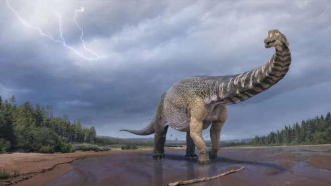 В Австралії відкрили новий вид динозаврів, який був найбільшим на континенті