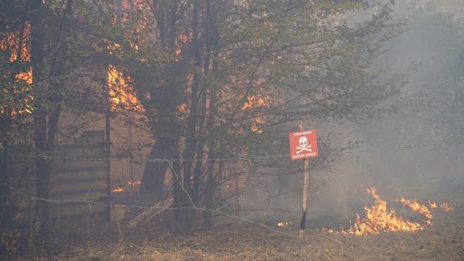 Масштабные пожары в Луганской области: чиновников ГСЧС будут судить за подделку документов и имитацию тушения возгораний
