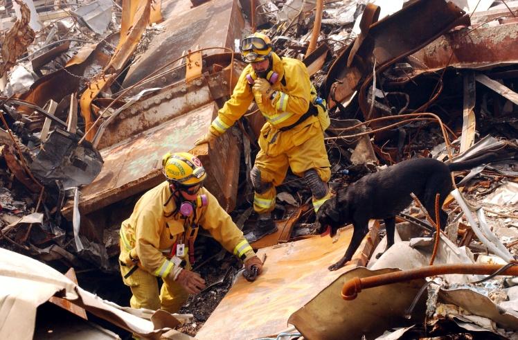 Майк Скотт из Калифорнийской оперативной группы-8 и его собака Билли ищут жертв теракта 11 сентября во Всемирном торговом центре, 21 сентября 2001 года, Нью-Йорк.