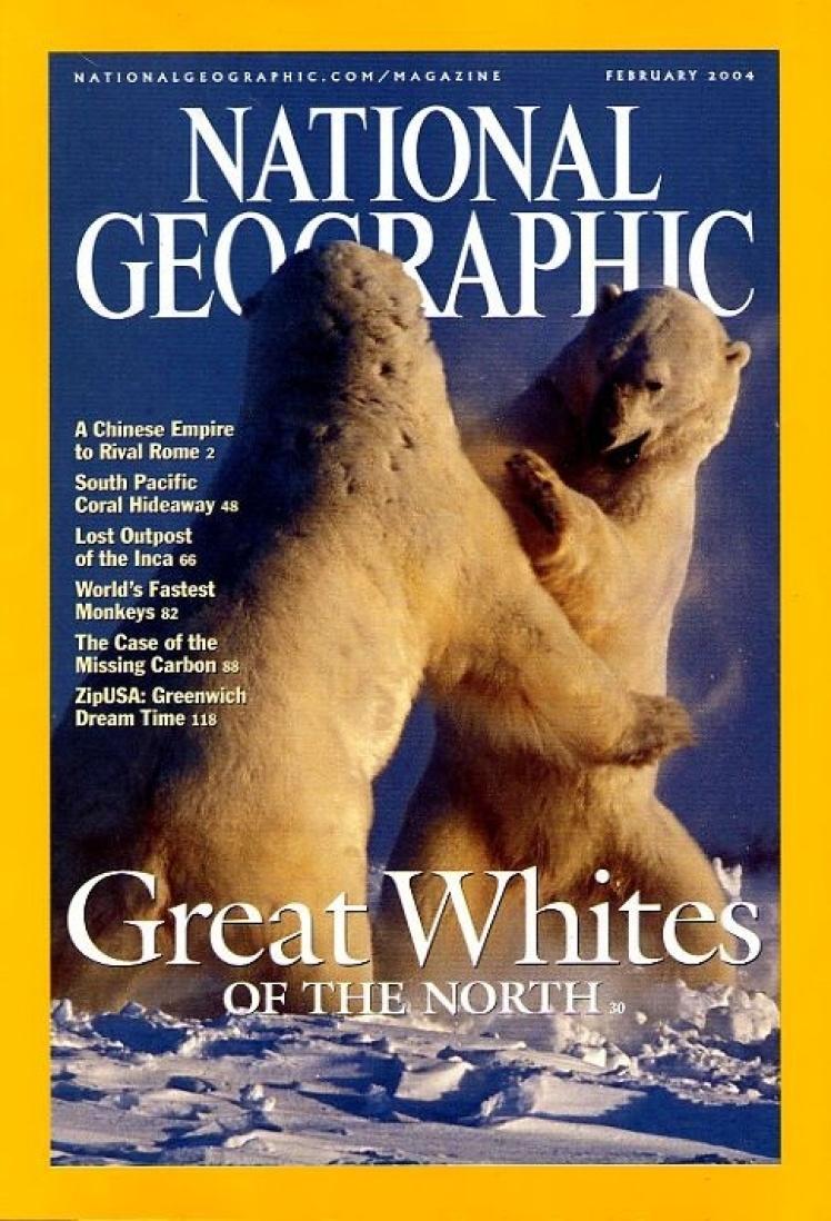 Лютий 2004 року. На фото двоє самців білих ведмедів. Вони не можуть полювати, поки не замерзне лід, тому з липня по листопад ведмеді живуть за рахунок запасів жиру. Але в останні роки лід став танути раніше.