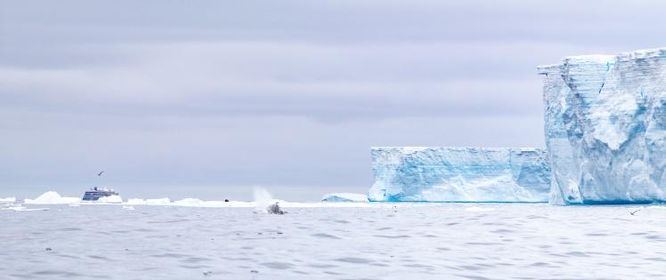 Айсберг А68, 10 березня 2020 року.