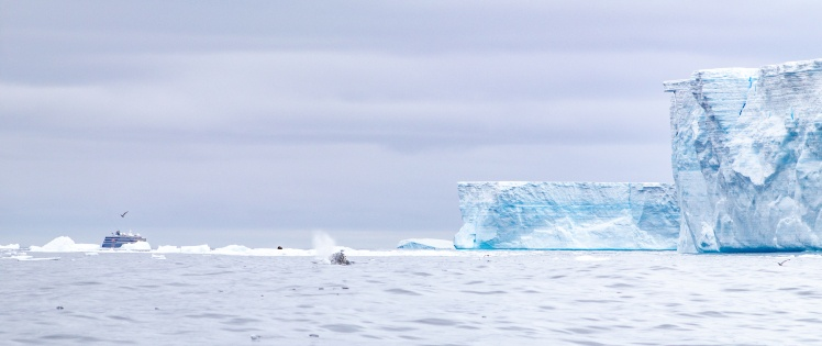 Айсберг А68, 10 марта 2020 года.