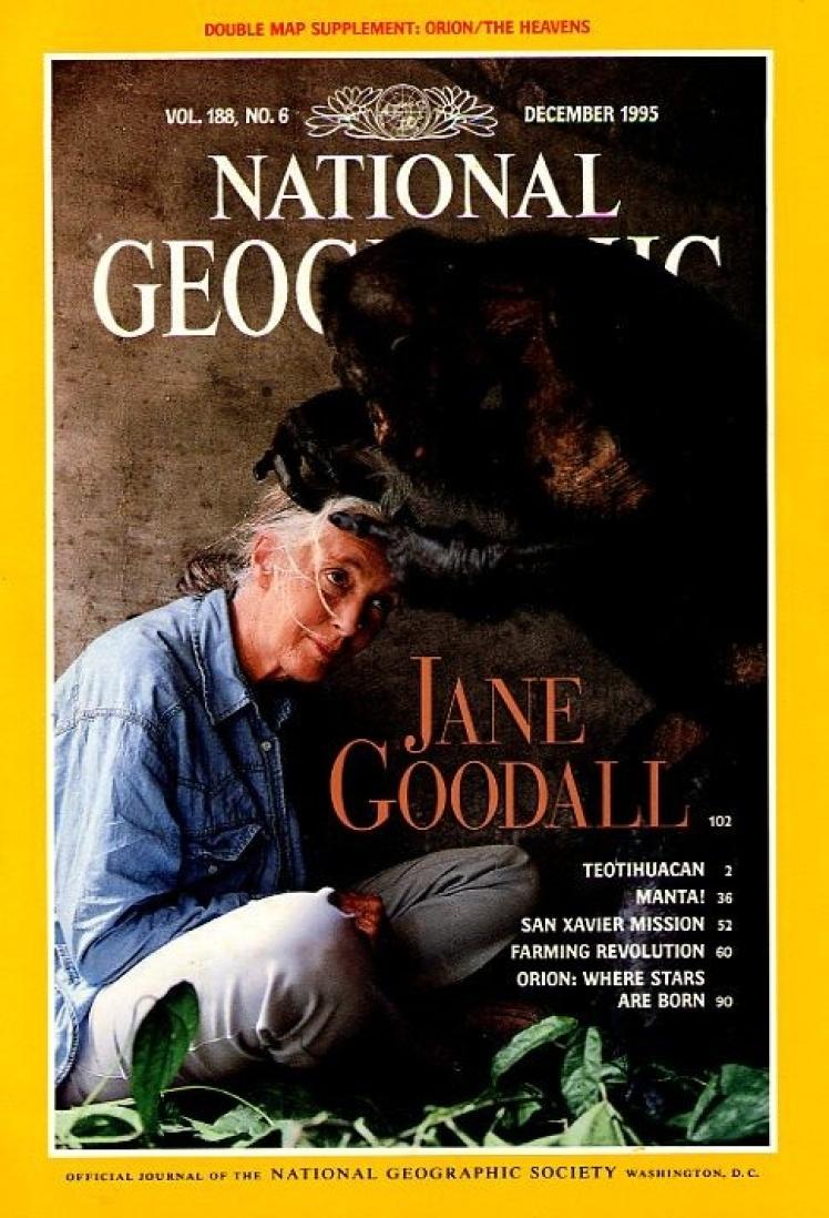 Грудень 1995 року. На обкладинці приматологиня Джейн Гудолл, яка понад 35 років вивчала шимпанзе в умовах дикої природи.