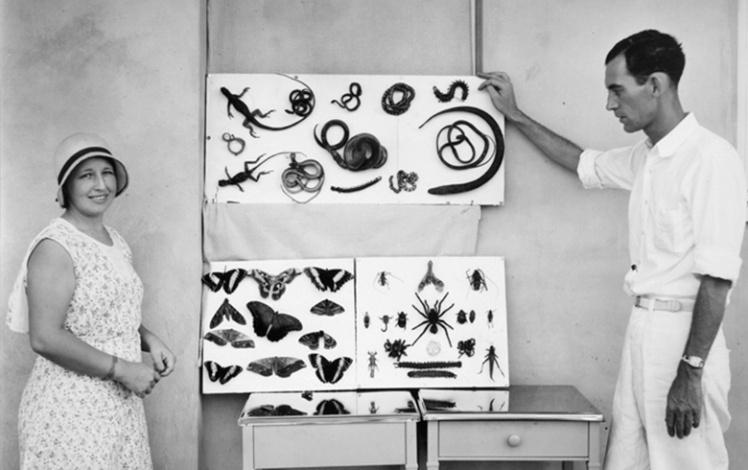 Местный врач с женой демонстрируют найденных на территории Фордляндии животных.