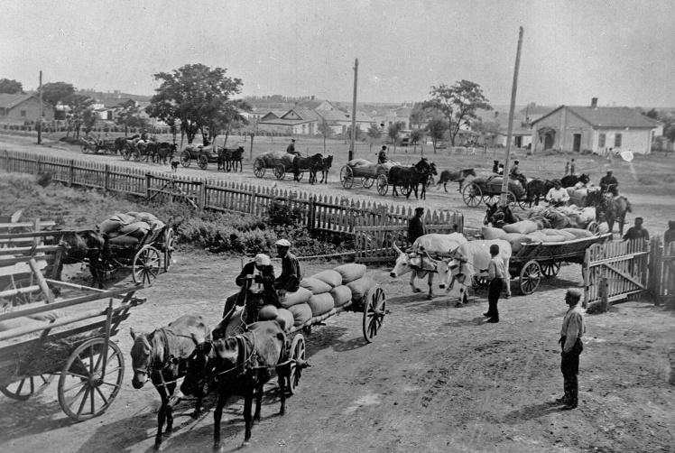 Колгоспники Київської приміської зони везуть зерно для здачі державі, початок 1930-х років.