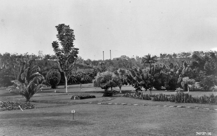 Местное поле для игры в гольф.