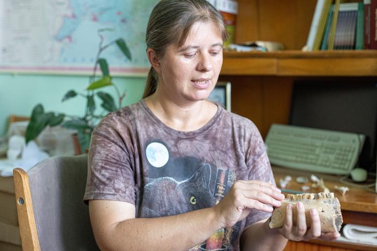 Челюсть бобра, которой шесть тысяч лет. Она почти не отличается от современной. По костям можно определить вид, границы его ареала и воспроизвести размеры животного.