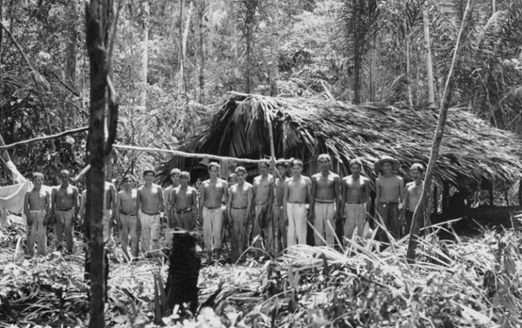 Рабочие расчищают джунгли на землях Форда.