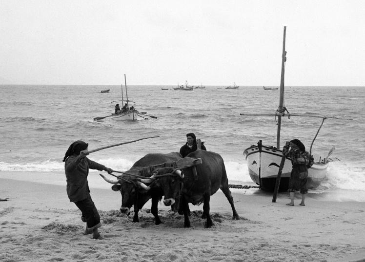 Португальські рибалки, 1 січня 1948 року.